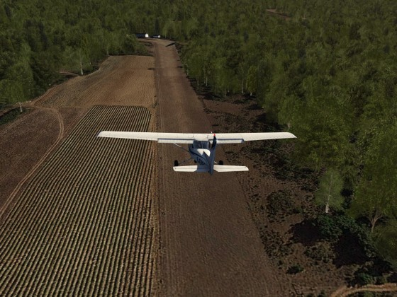 Could somebody help me to cut the trees near runway ?