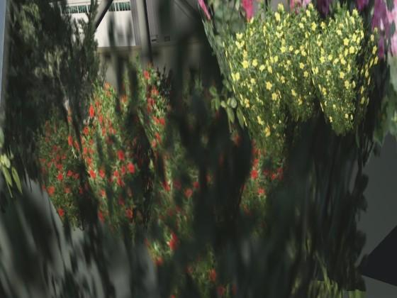 3d Plants in KTEX