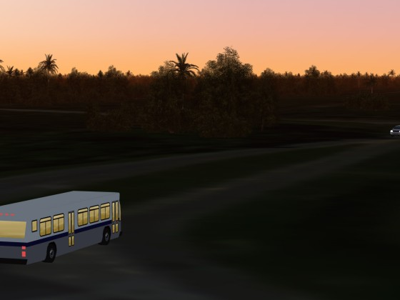 Evening Bus Tour on the Cape